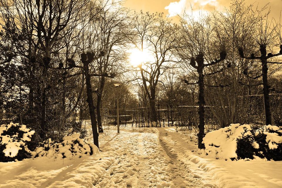 Prepare Your Asphalt for Winter
